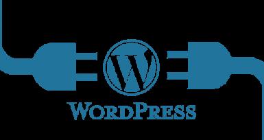 WordPresste Özel Url Kuralı Ekleme