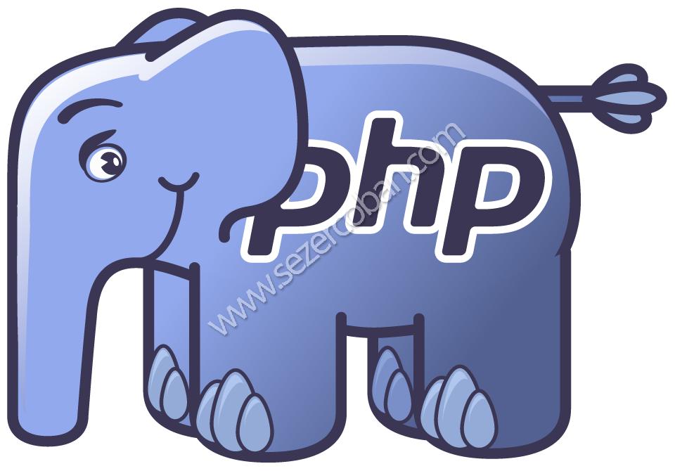 php programlama dili