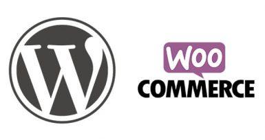 WordPress Woocommerce SKU'ya Göre Ürün Getirme